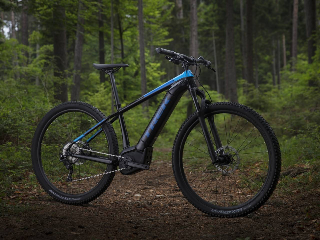 Electric Mountain Bike Rental